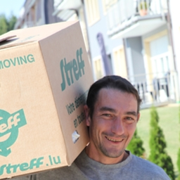 Moving company - Box transported by a mover